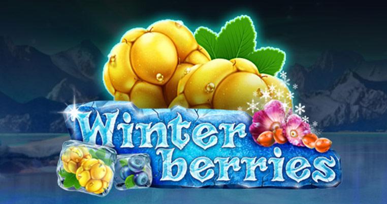 Winter-Berries stor